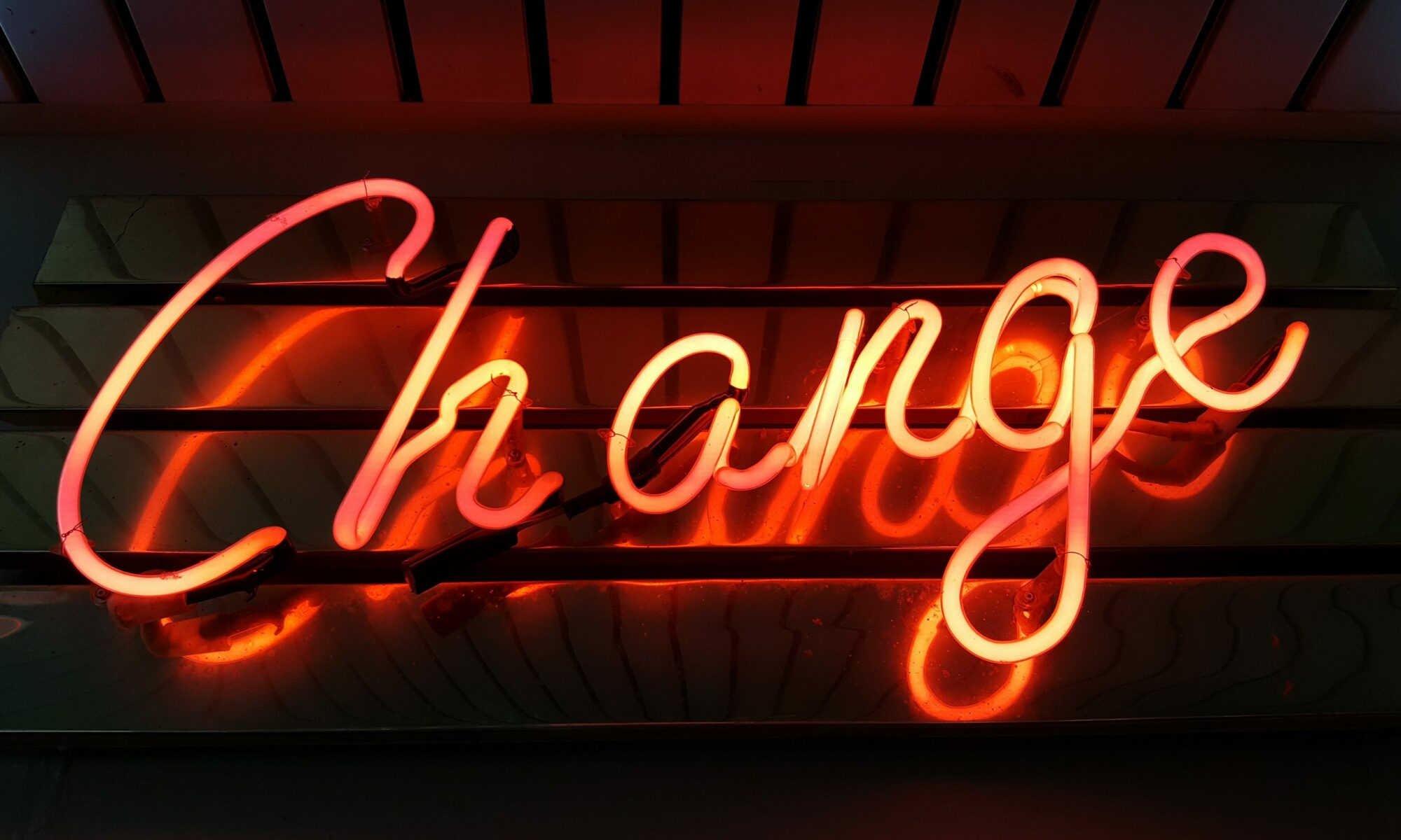 The most important designer traits to survive change
